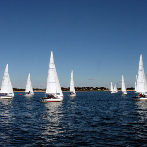 hawk 20 sailing image-106