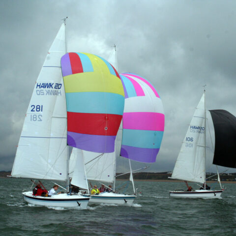 hawk 20 sailing image-075