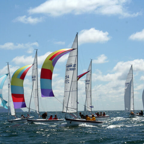 hawk 20 sailing image-079