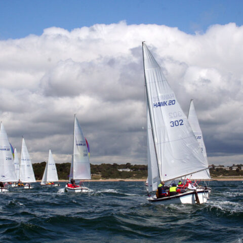 hawk 20 sailing image-080
