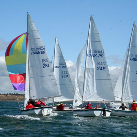 hawk 20 sailing image-082