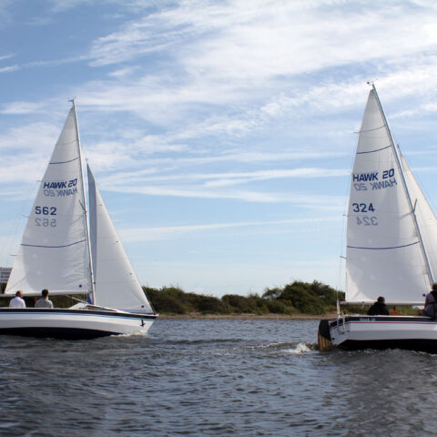 hawk 20 sailing image-090