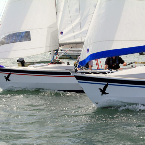 hawk 20 sailing image-096