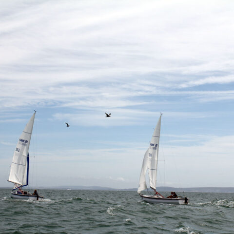 hawk 20 sailing image-099